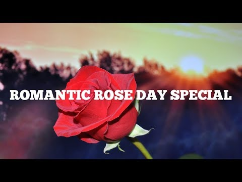Happy Rose Day 2019 Wishes, Rose Day Shayari SMS Status Quotes In Hindi,Greetings,Romantic Quotes