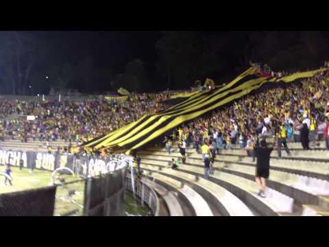 Avalancha Sur - Bandera Gigante + Aurinegro, mi buen amigo. Deportivo Táchira vs. Yaracuyanos. - Avalancha Sur - Deportivo Táchira