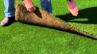 Levi's® Stadium Turf Installment for 49ers