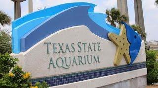 Corpus Christi (TX) United States  city images : Texas State Aquarium, Acuario Estatal de Texas, Corpus Christi, Texas