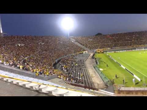 Hinchada de Peñarol desde tribuna de Estudiantes(2) - Barra Amsterdam - Peñarol - Uruguay - América del Sur
