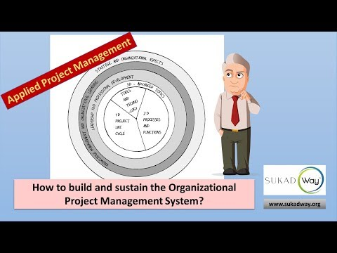 How to build and sustain the organizational project management system?