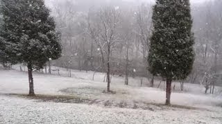 Dry Ridge (KY) United States  City pictures : Snow in Dry Ridge, Ky.