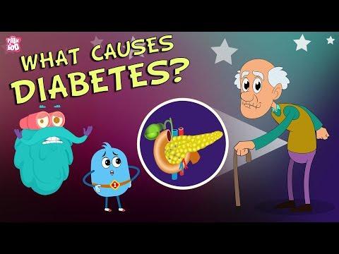 What Causes Diabetes? | The Dr Binocs Show | Best Learning Videos For Kids | Peekaboo Kidz