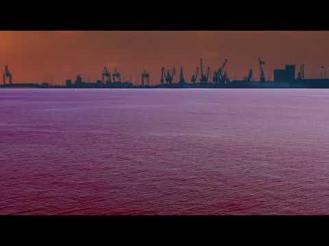 Video - Οι σολομοί επιστρέφουν στην κοίτη του ποταμού για να γεννήσουν