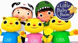 Video Nursery Rhyme Videos | *Volume-19* | Compilation from LittleBabyBum! | Live Stream! MP3, 3GP, MP4, WEBM, AVI, FLV Mei 2018