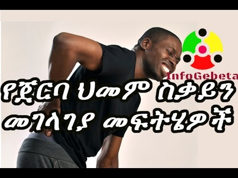 InfoGebeta How to prevent and cure back pain?
