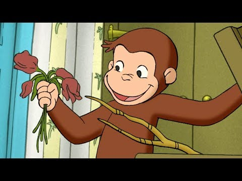 Curious George 🐵Much Ado About Nothing 🐵Full Episode🐵 Cartoons For Kids 🐵 Kids Movies