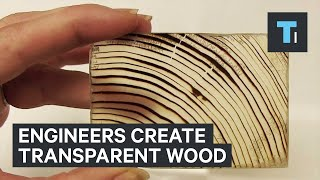 Transparent Wood