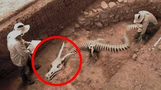 Video MYSTERIOUS Discoveries Science STILL Can't Explain! MP3, 3GP, MP4, WEBM, AVI, FLV Maret 2019