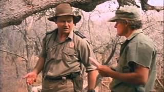 Nonton Born Wild Trailer 1995 Film Subtitle Indonesia Streaming Movie Download
