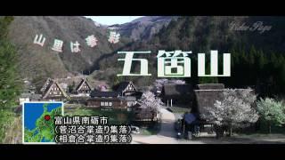 旅レポ【富山県】夏になると行きたくなる五箇山