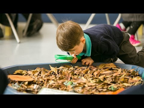 How to stop feeling bored at school | Official Website of David Puttnam | Atticus Education | Education