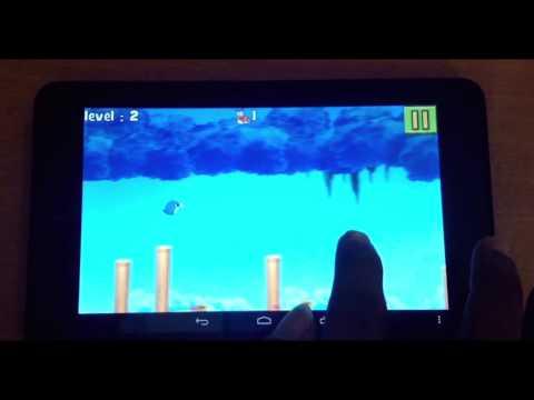 Video of Retry Bird