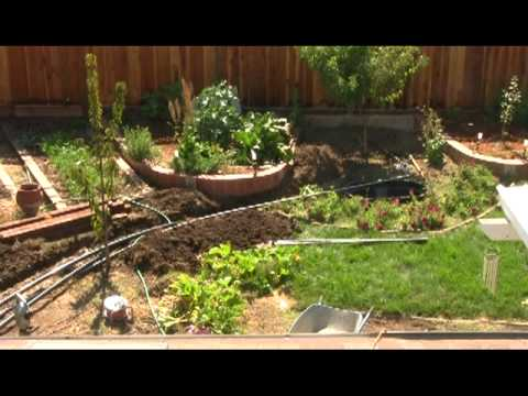 How to grow potatoes aquaponics must see waters sistem for Aquaponics pond design