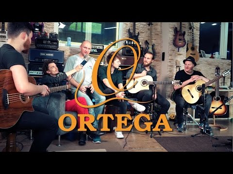Ortega feat. CAMPAIGN LIKE CLOCKWORK - Waterfalls