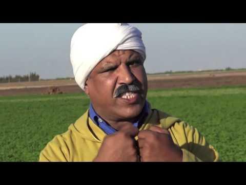 فيديو الفكاهي عاطر حول الانتخابات