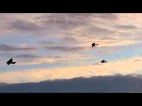 The Hoosier Dawn Patrol, second wave Sunday 8 17 2014