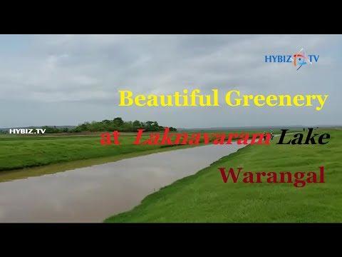 Beautiful Greenery at Laknavaram Lake Warangal
