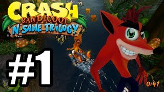 Hey guys! welcome back to the Crash Bandicoot N. Sane Trilogy for the PS4This time we tackle Crash Bandicoot 2! The game i grew up playing. My FIRST EVER PS1 game. Its gonna be a lot of fun revisiting this  within the Crash Bandicoot N. Sane Trilogy. SO sit back and relax and enjoy the CRASH!Crash Bandicoot N. Sane TrilogyCrash Bandicoot 2PS4Twitter - @LordVash