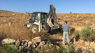 الاحتلال يقتلع أشجار زيتون ويسرقها في قرية شوفة جنوب طولكرم