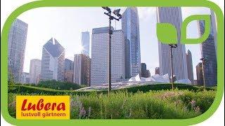 Lurie Garden Park in Chicago - präsentiert von Lubera