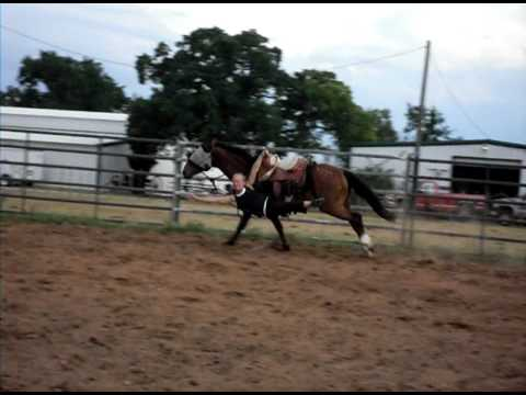 Trick riding supreme Extreme mustang makeover Boozer at 8 weeks training