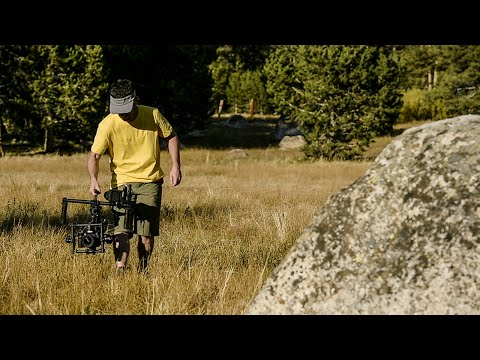 Basics - www.adorama.com It wasn't possible for a single camera operator to get fluid, cinematic, Hollywood-quality camera movements by himself until today. Thanks to the Freefly MOVI M5, a digital...