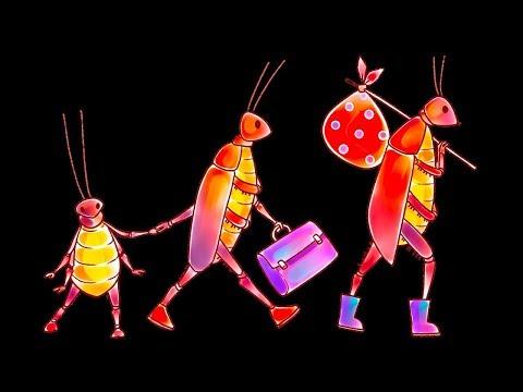 Como livrar sua casa das pulgas