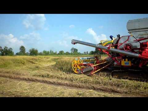 รถเกี่ยวข้าวเกษตรพัฒนาศรีสะเกษ2