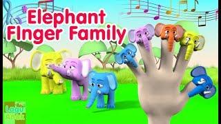 Video FINGER FAMILY - ELEPHANT FAMILY 3D  (Gajah)   Nursery Rhyme   Lagu Anak MP3, 3GP, MP4, WEBM, AVI, FLV Mei 2018