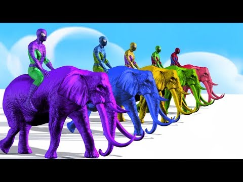 Colors Spiderman Riding Elephant | Learn Colors Animals For Children | Colours Cartoon For Kids