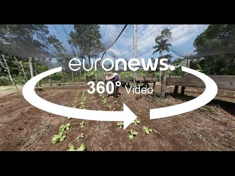 Κολομβία: Επισιτιστικά προγράμματα για τη μείωση της μετακίνησης επαρχιακών πληθυσμών