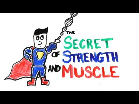 The Scientific Secret of Strength and Muscle Growth_Computer, UFO sightings, mobil, internet videos: