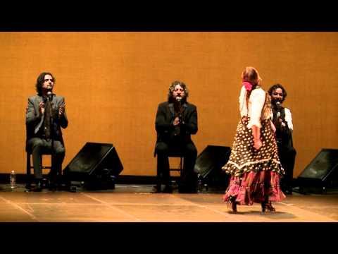 Resumen de la IV Bienal de Arte Flamenco de Málaga