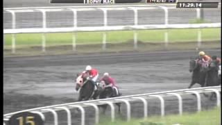 RACE 2 HEAVENLY FIELDS 11/29/2014