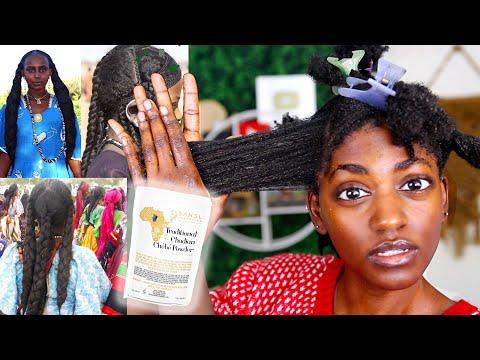 I Tried Chebe Powder for a WEEK annnnnnddddd.... |  4C Natural Hair