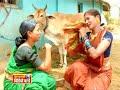 Marathi Song - Mutton Kha Wale - Nauvari Cha Nakhara - Super Hit Marathi Song  Video and MP3