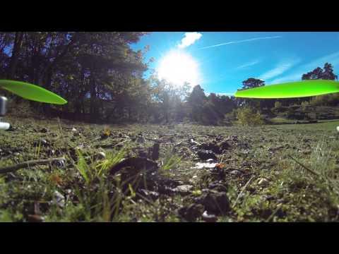 Quadcopter 1st flight Oxshott Woods