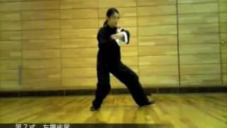 太極拳楊式古式簡化二十四式