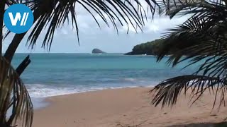 Creolic life style and diverse nature! Enjoy the caribbean! Our Playlist for the Caribbean: https://goo.gl/QnJtGS Subscribe to our...