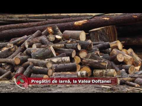 Emisiunea Proiecte pentru comunitate – 25 octombrie 2016 – Valea Doftanei