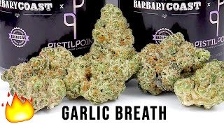 GARLIC BREATH STRAIN REVIEW by The Cannabis Connoisseur Connection 420