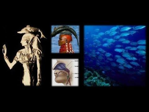 HAT MEHIT: Head of the Fish - Fosu Abogye and Epo Abenaa, Oloosa and Yemoja