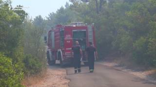 Firefighters in Montenegro battled for a third day on July 19 to control a forest fire on the Lustica peninsula near the border with...