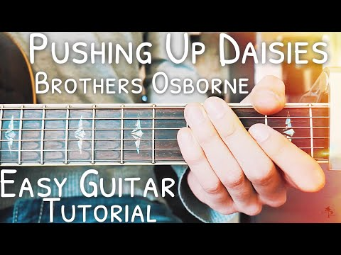 Pushing Up Daisies Brothers Osborne Guitar Lesson for Beginners // Pushing Up Daisies Guitar // #458