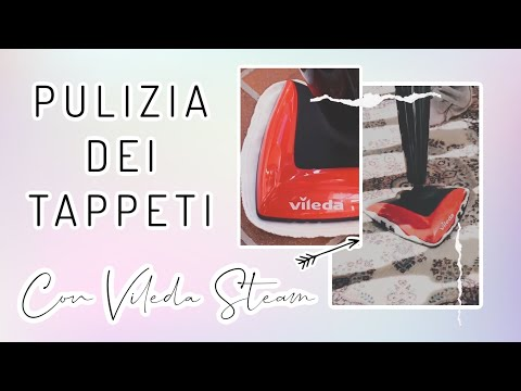 Testo La Scopa a Vapore VILEDA STEAM sui Tappeti