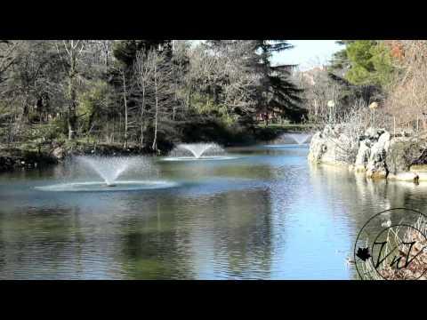 I Giardini Margherita visti dai Viaggiatori nel verde