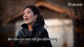 【voice from the Tibetan Plateau】party
