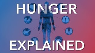 Video Intermittent Fasting & Hunger - What the Science says MP3, 3GP, MP4, WEBM, AVI, FLV September 2019